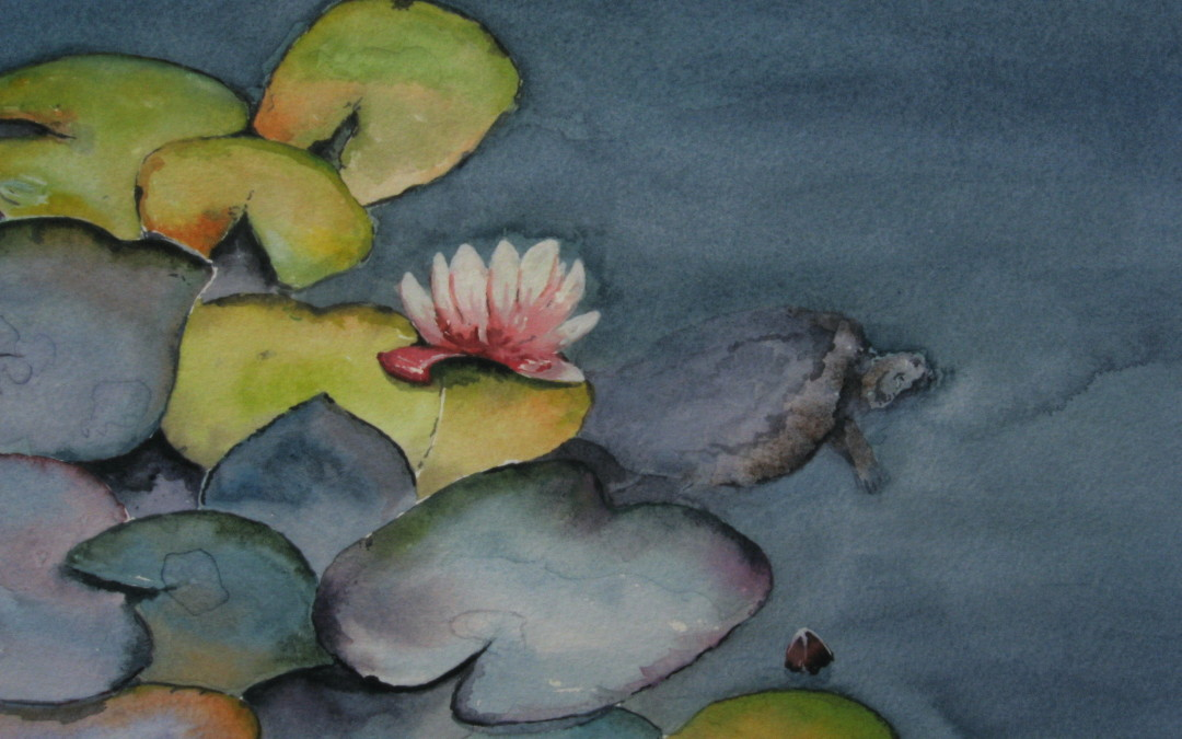 Look closely